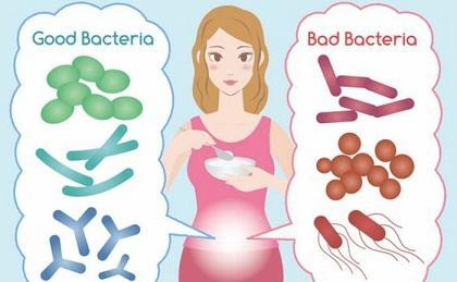 probiotiques 06
