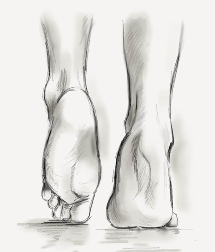 pied cheville